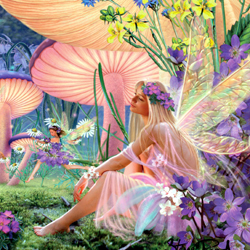 Faerie CD/Card 2